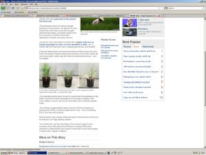 BBC cites rice genome paper
